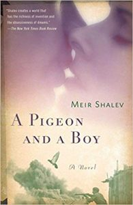 A Pigeon and a Boy by Meir Shalev